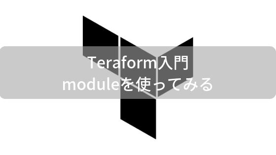 terraform module